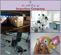 Factory Audit / Clothes Electric Dry Iron / Home Appliances / High QC / Profesional inspection in China