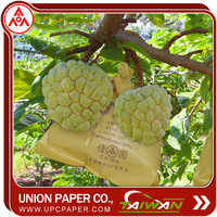 sweet sop protection bag Grow Bags For Fruit