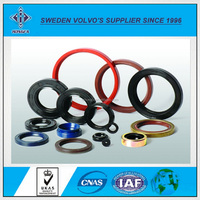 Supplier Customized Various Molds Of Oil Seals