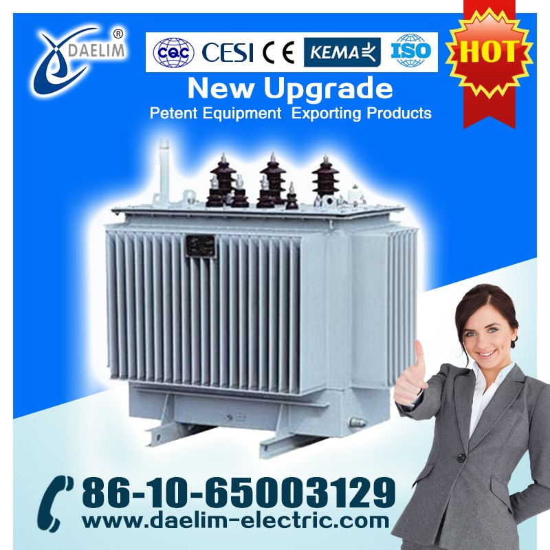 1000kva 22/0.4kv Oil Immersed Distribution Transformer with OLTC