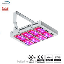 veg bloom led -full spectrum grow light for carnivorous plant