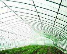 Tunnel agriculture film greenhouse