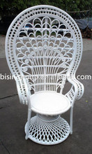 Living room furniture rattan chair peacock chair(BF10-R459)