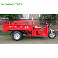 Tricycle by Electric Battery/Gasoline Engine Power Cargo 3 Wheel Motorcycle