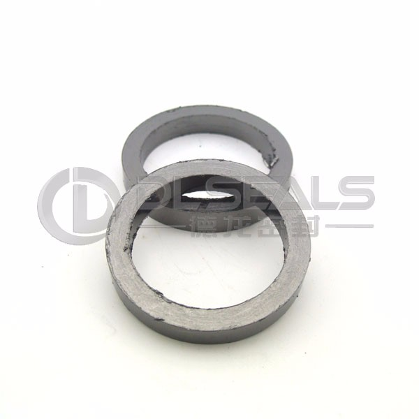 DLseals PEGR78104 for pump valve sealing Graphite Rings