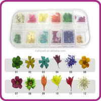 2014 hot selling New Style fashion Artificial Fingernails nail art tips nail real flower set