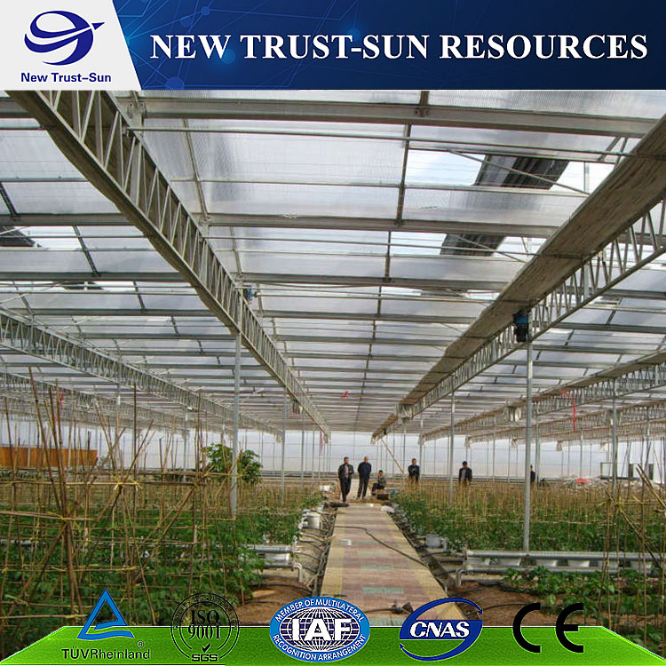 Polycarbonate/ PC sheet greenhouse with hydroponic system