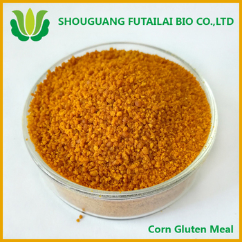 extract lutein from corn gluten meal with super quality
