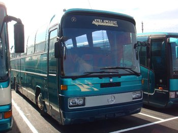 used buses MERCEDES-BENZ O303 bus