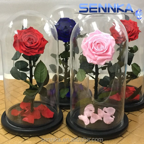 wholesale real natural preserved roses in glass dome/tubes long life <strong>flower</strong>