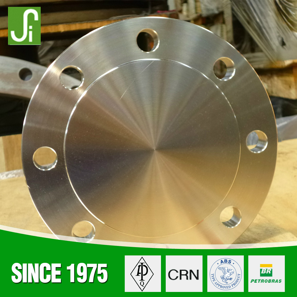 316L Stainless steel class 300# Blind Flanges