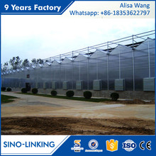 SINOLINK exporting plastic sheeting Polycarbonate greenhouse with shade cloth lowes