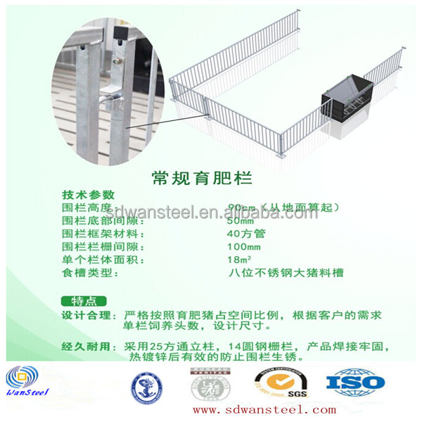 china high quality pig Fatten Crate