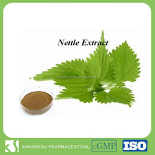 High quality Naturl stinging nettle extract Urtica dioca 10:1 Nettle extract