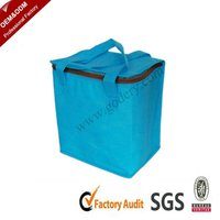 Hot Selling Promotional Portable Cooler Ice