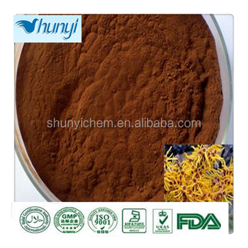 high quality witch hazel powder factory direct sale and good price
