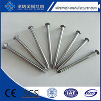 normal head iron material 0.8mm smooth common nail