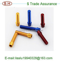Coustomed OEM service decorative screw fasteners