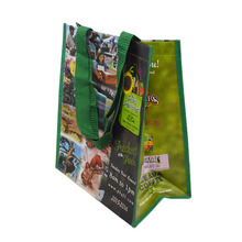 ISO/BSCI Recyclable Full color printed Eco 100gsm handle pp woven shopping bag