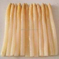 fresh raw material canned white asparagus with favorable price