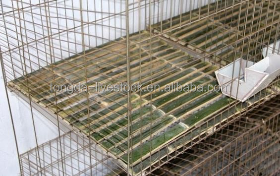 ISO approved acrylic rabbit cage made in China large scale farming rabbit crates/kennels