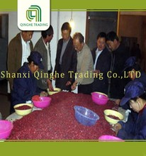 wholesale specked red kidney beans types of kidney beans from china