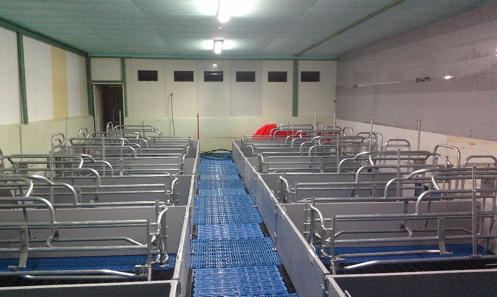 Pig farrowing crate/pig cage/pig equipment