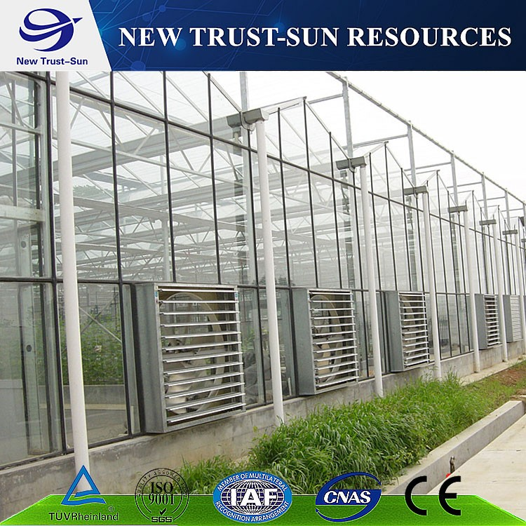PC sheet/board hydroponic agriculture greenhouse for commerical use