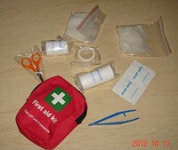 Mini travel medical first aid kit