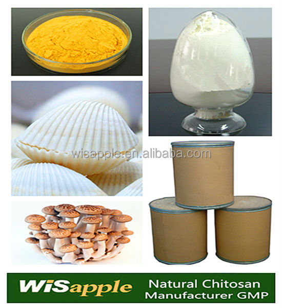 98% Fungal source Pharmaceutical Grade Chitosan supplier