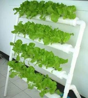 custom low cost plant floor display rack