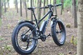 48V 500W cheap electric mountain bike with best price