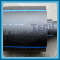 Plastic Piping System PE Pipe SDR17