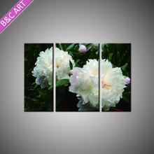 Wall Hanging Drawing Pictures Poster Decor Art Customized Flower Landscape Painting
