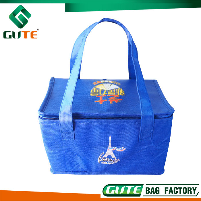 China manufacturer Pizza bag insulated warmer food cooler bag