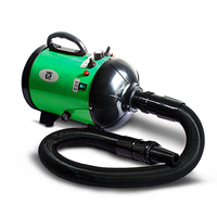 Professional Manufacture 2800W Pet Dog Blow Dryer