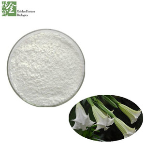Natural Upright Datura Flower Extract, Medicine Grade Scopolamine 99% Powder, CAS:51-34-3