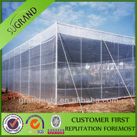 High quality bee netting from china factory competitive price