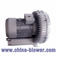 jacuzzi blower,electric ballon vacuum pump,swimming pool air pump