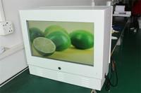 22'' gas station/petyrol pump dual-screen LCD advertising player , outdoor waterproof audio player