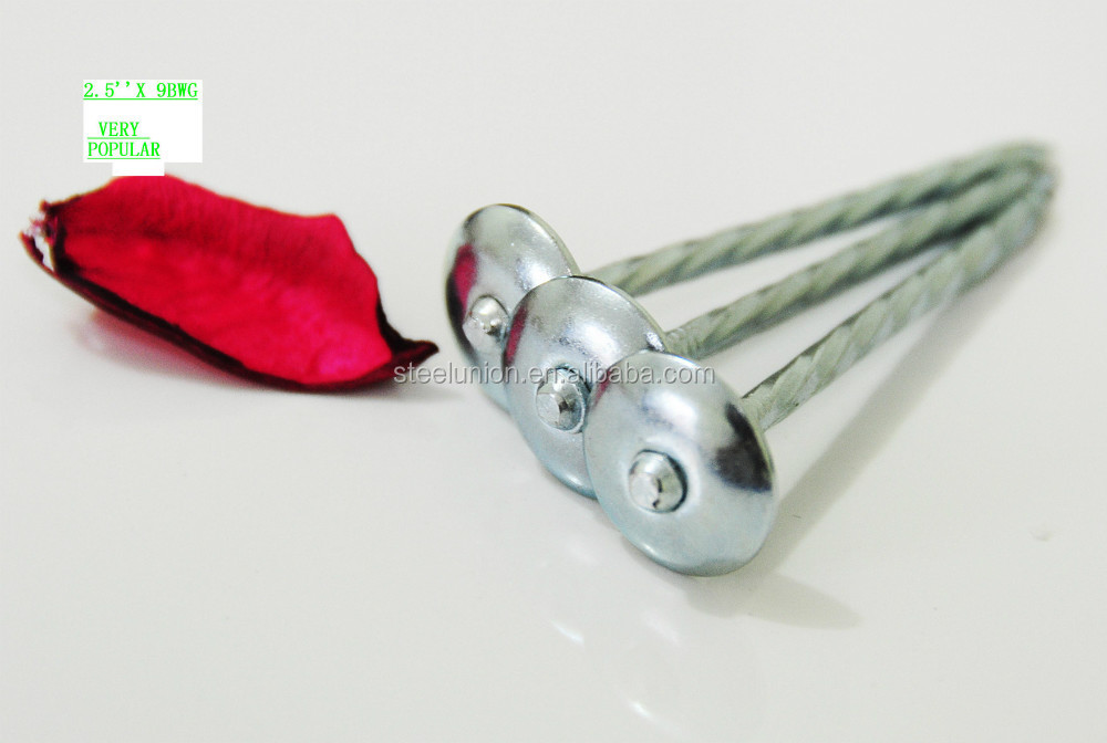 Galvanized umbrella head roofing nails in fasteners