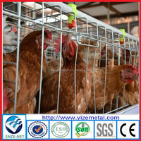 alibaba express three tier layer chicken cage(120 birds type)