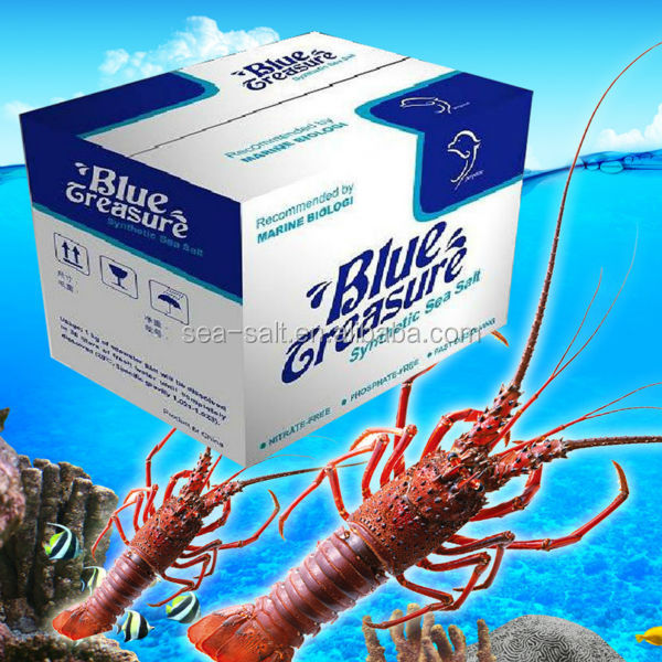 Marine aquarium fish tank aquaculture sea salt live lobster price