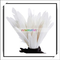 50pcs Home Decor White Goose Feathers For Sale -13007192