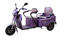 Fengshou Chinese brand cargo bike with 3 wheels for old people electric tricycle two seats/carry passengers