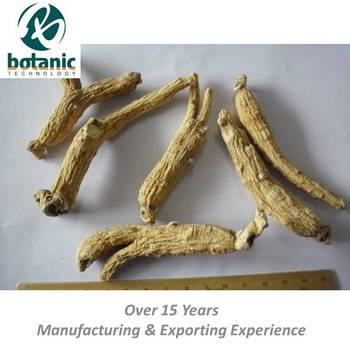 Natural dried pesticide free Ginseng root