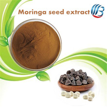 LanBing supply Herb plant extract ingredient additive moringa seed extract