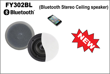 Portable Professional Music Equipment Wireless Bluetooth Ceiling Speaker