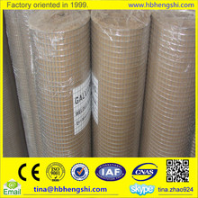Factory price 1/2 inch galvanized welded wire mesh