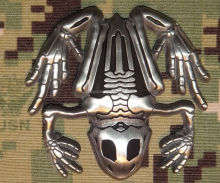 Polished silver Bone Frog / Navy SEAL Challenge Coin
